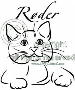 Bilde av Katt med navn