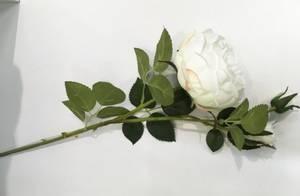 Bilde av Blomst rose 1rose 2knopper