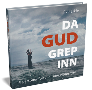 Bilde av DA GUD GREP INN av Ove Eikje