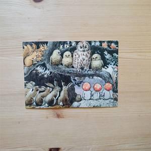 Bilde av Postkort Elsa Beskow uglas skole