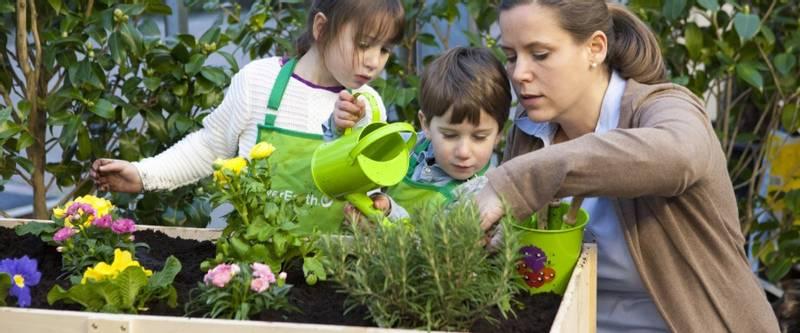 Hagesett for barn, Økologisk