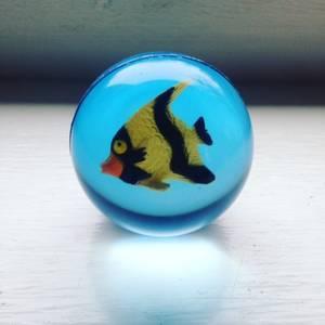 Bilde av Sprettball med fisker 3D
