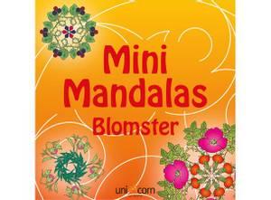 Bilde av Mini Mandala Blomster