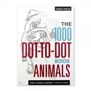 Bilde av 1000 punkt-til-punkt tegnebok