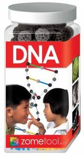 Zometool DNA