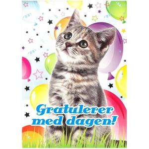 Bilde av Bursdagskort -  Katt