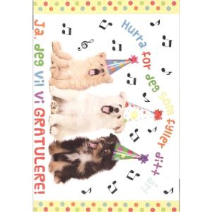 Bilde av Bursdagskort - Syngende Hunder