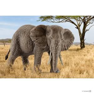 Bilde av Schleich Afrikansk Elefantku
