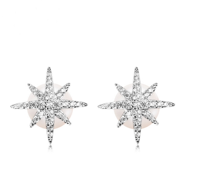 Bilde av Sølvøredobber Stjerne
